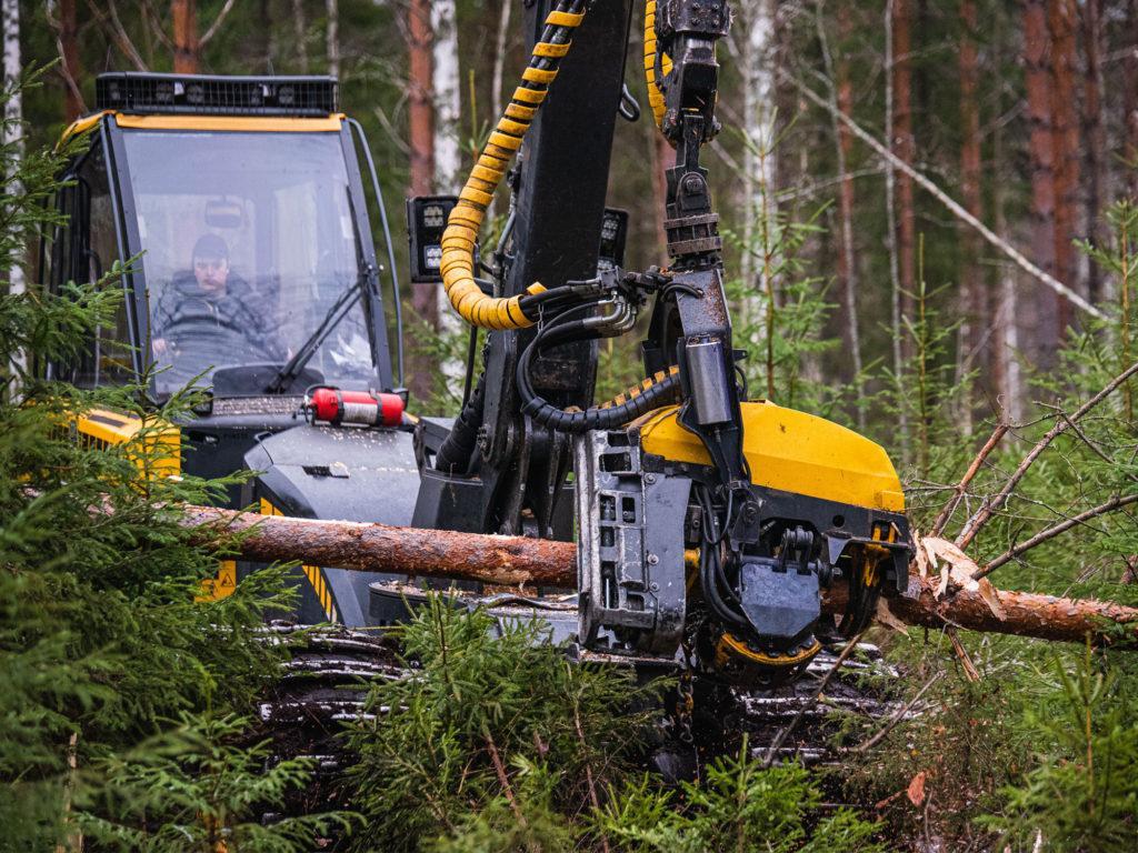 Moto harventamassa metsää